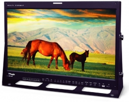 TVLogic 24'' HD High-End True-10 bit OLED Multiformat